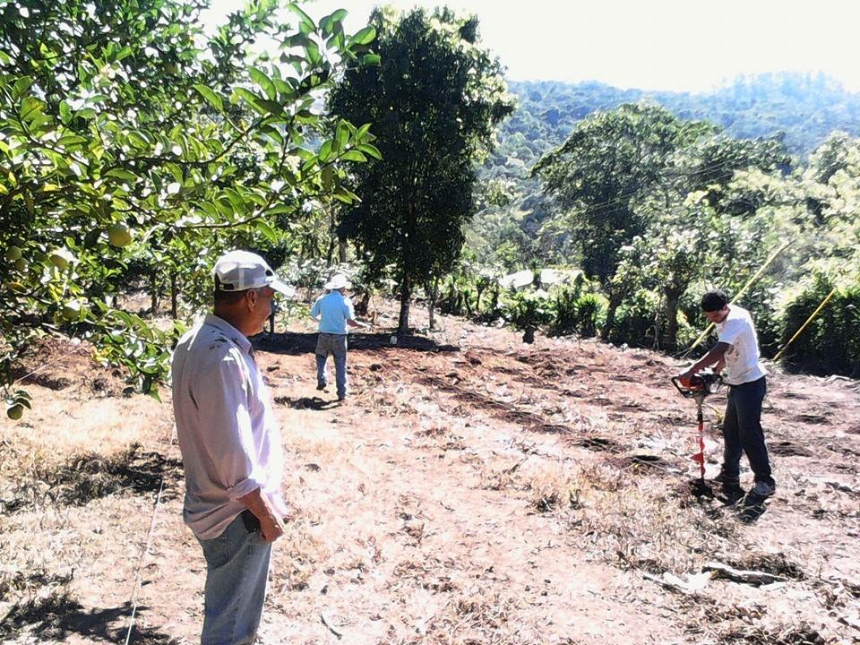 Farmers in Honduras