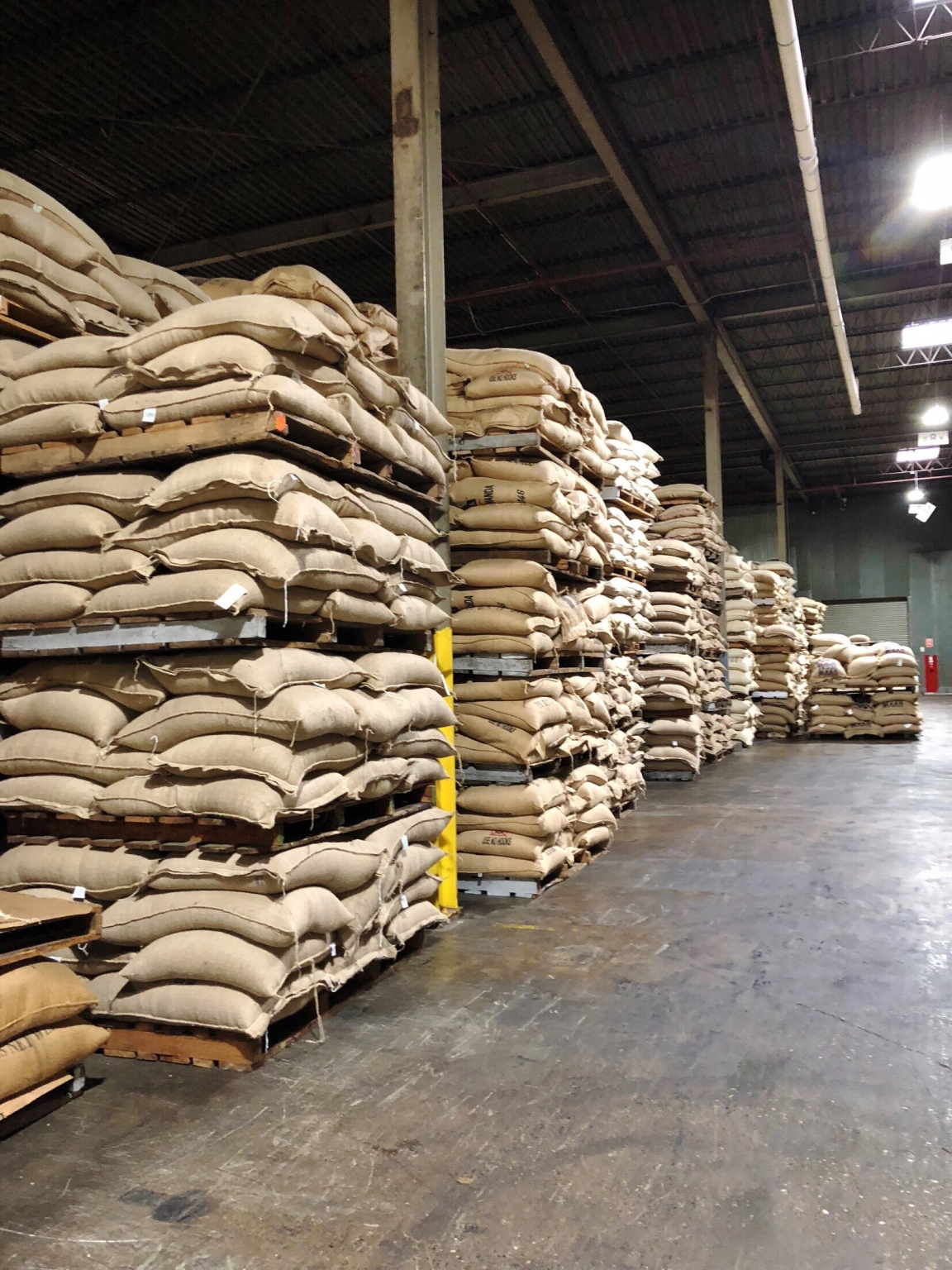 Coffee bags in warehouse